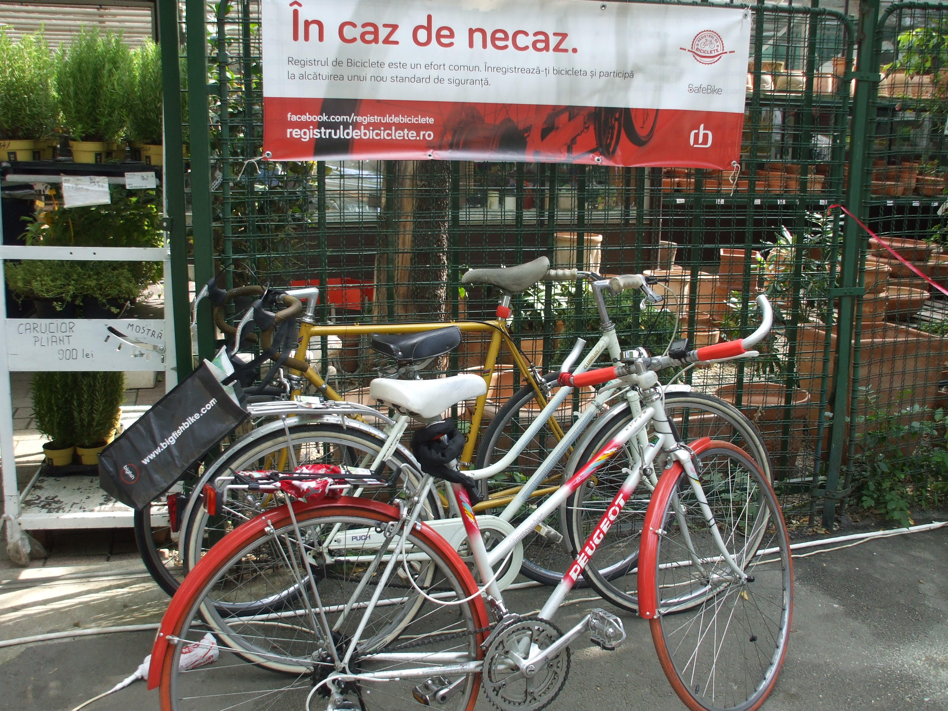 Street Delivery Bucharest - Bicycles & Bike Registry
