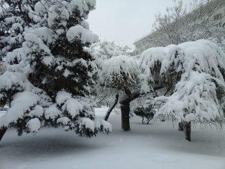 BUCHAREST WINTER LANDSCAPE 2015