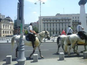 Riding Police on Calea Victoriei in Bucharest - 2